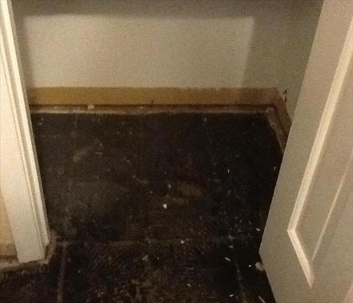 Water Damage in Levittown Home After
