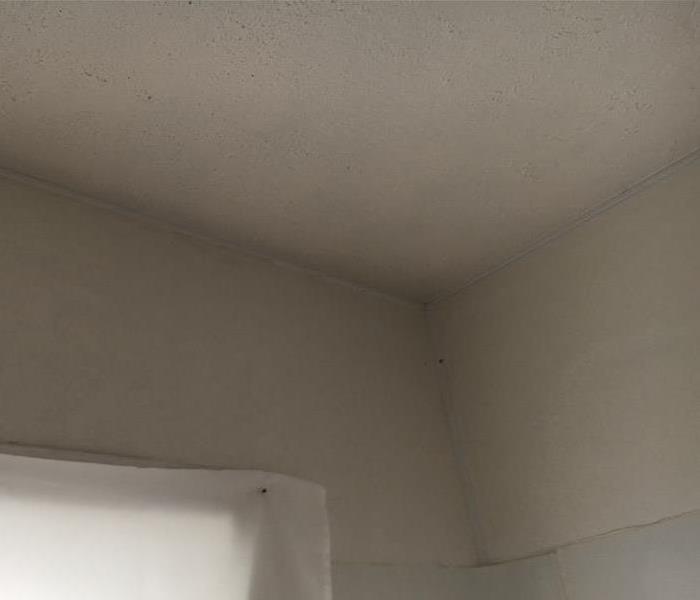 Mold Damaged Bathroom