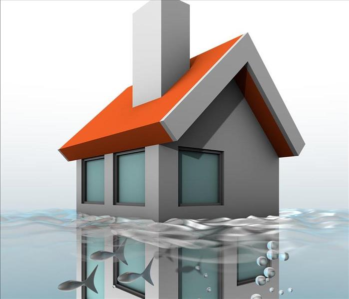 Water Damage Water Removal For Your Home