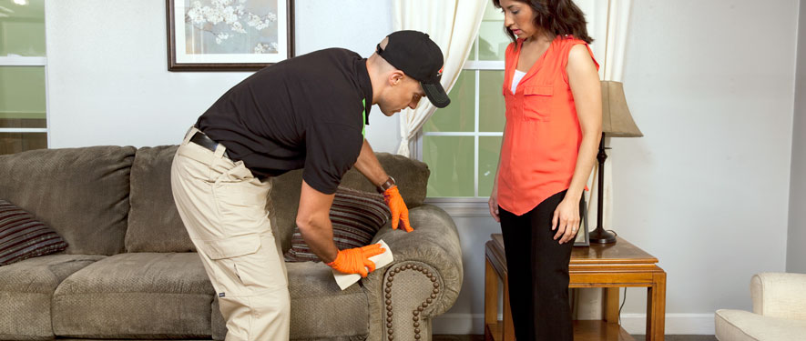 Levittown, PA carpet upholstery cleaning